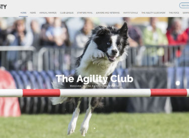 The Agility Club
