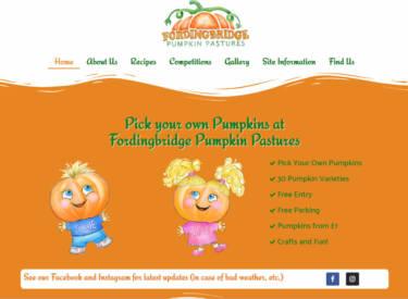 Fordingbridge Pumpkin Pastures