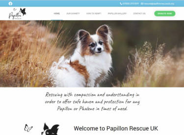 Papillon Rescue UK